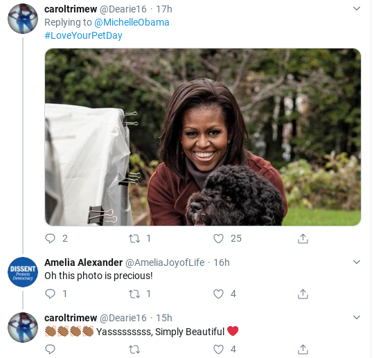 Screenshot-2020-02-21-at-11.59.01-AM Michelle Obama Returns With Heart Warming Message For America Donald Trump Politics Social Media Top Stories