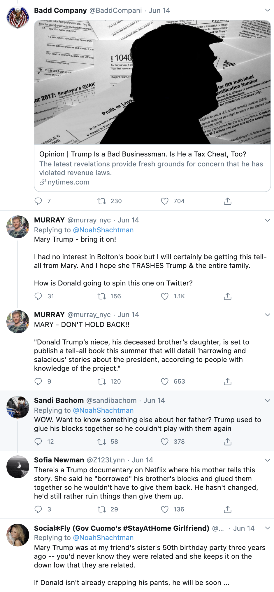 Screen-Shot-2020-06-16-at-9.21.35-AM Trump Ruthlessly Cuts Medical Support For Nephew Because He's Evil Child Abuse Corruption Election 2020 Featured Top Stories