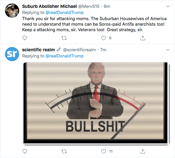 Screen-Shot-2020-07-26-at-6.56.42-PM Trump Calls Vet & Mom Protestors Fake News During Online Hissy-Fit Conspiracy Theory Coronavirus Donald Trump Election 2020 Featured Politics Top Stories Twitter