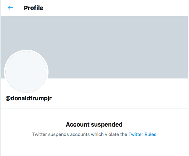 Screen-Shot-2020-07-28-at-10.45.03-AM Trump Jr Suspended By Twitter Over 'Doctor' Who Believes In Demon Sperm Coronavirus Donald Trump Featured Politics Top Stories Twitter