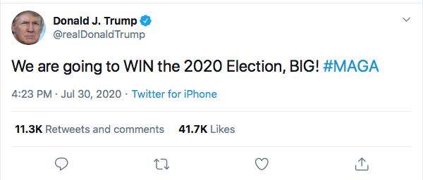 Screen-Shot-2020-07-30-at-4.41.03-PM Trump De-Legitimizes Election Again During Afternoon Hissy-Fit Donald Trump Election 2020 Politics Top Stories Twitter