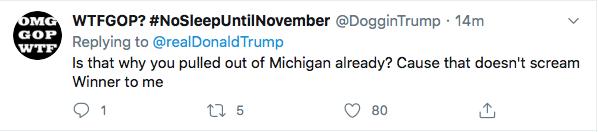 Screen-Shot-2020-07-30-at-4.41.50-PM Trump De-Legitimizes Election Again During Afternoon Hissy-Fit Donald Trump Election 2020 Politics Top Stories Twitter