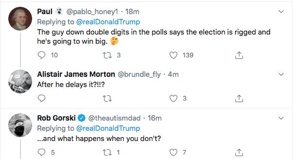 Screen-Shot-2020-07-30-at-4.43.09-PM Trump De-Legitimizes Election Again During Afternoon Hissy-Fit Donald Trump Election 2020 Politics Top Stories Twitter