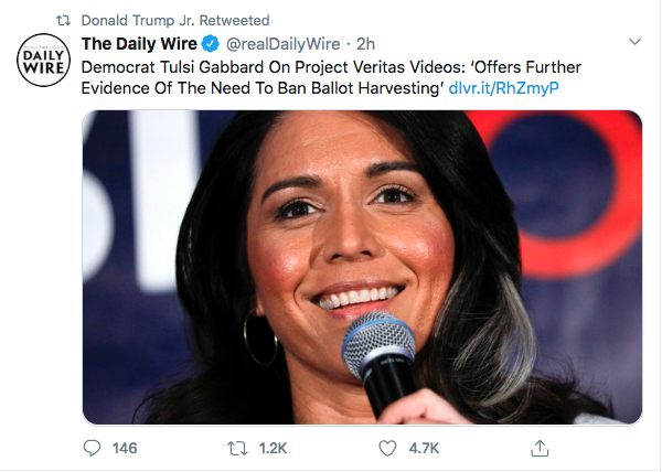 Screen-Shot-2020-09-29-at-9.48.57-AM Ilhan Omar 'Ballot Harvesting' Narrative Fully Debunked By Evidence Conspiracy Theory Donald Trump Election 2020 Featured Politics Top Stories Twitter