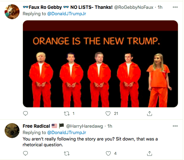 Screen-Shot-2021-01-21-at-11.33.02-AM Don Jr. Has Belligerent Emotional Collapse Over Biden's First Moves Featured Politics Top Stories Twitter